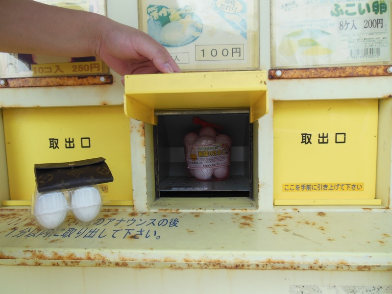 The egg hatching machine. Photo by Louis Wai.