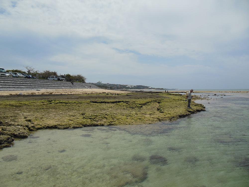 Haisai=Motobu Coast
