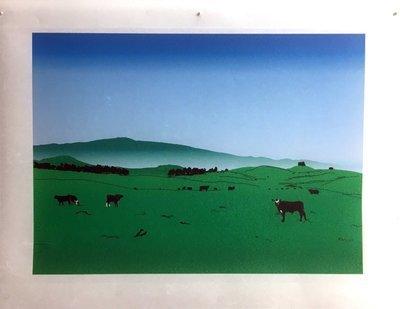 Photo of Artwork, Waimea Ranch